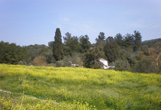 Chios island, Greece, spring 2019